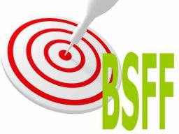 Webinar: So formulierst du starke Ziele für dein BSFF-Selbstcoaching