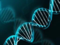 Webinar: Nachhilfe in Biologie - Antworten auf alle Fragen