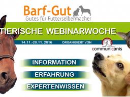 Webinar: Ernährung bei Arthrose & Co und Hunde-Senioren richtig füttern.