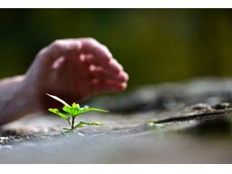 Webinar: Resilienz - Mit Souveränität und Widerstandskraft gegen den Stress