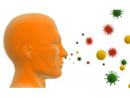 Webinar: Allergien:  Ursachen und Heilungsmöglichkeiten