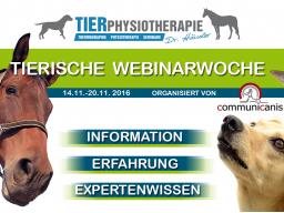 Webinar: Übergewicht beim Hund & Wundheilung beim Tier (2 Webinare 1 Preis)