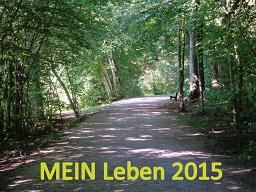 Webinar: MEIN Leben 2015: Die Weichen richtig stellen