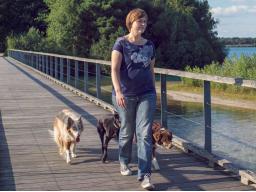 Webinar: Körpersprachliche Kommunikation mit Hunden