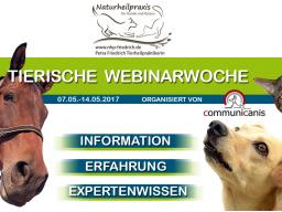 Webinar: Mykotherapie | Referentin Petra Friedrich