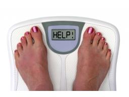 Webinar: Die Wahrheit übers Abnehmen - was Ihnen keine Diät der Welt je verraten wird!