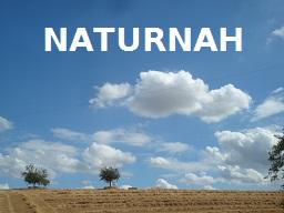 Webinar: Naturgestützte Hypnotherapie bei Ängsten und Panikattacken