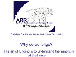 Webinar: Why do we lunge?