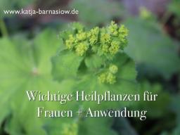 Webinar: Frauenheilpflanzen + Anwendung