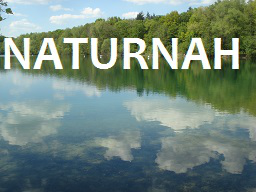 Webinar: Naturgestützte Selbsthypnose - ein Infowebinar!