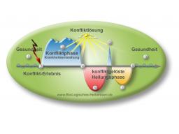 Webinar: Ausbildung BioLogisches Heilwissen Paderborn Supervision