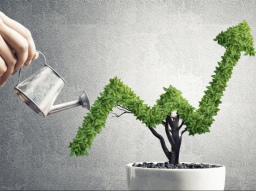 Webinar: Hızlı ve Kolay şekilde Finansal Bağımsızlık