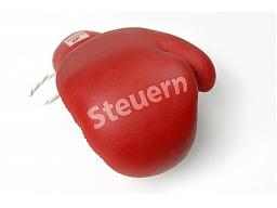 """Webinar: vame-Vorlesung, FB """"Steuerlehre"""""""