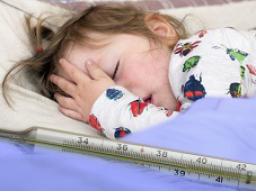 Webinar: Was gebe ich meinem Kind zu essen, wenn es krank ist?