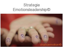 Webinar: Strategie Emotionsleadership©