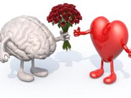 Webinar: Emotionen verstehen und umwandeln