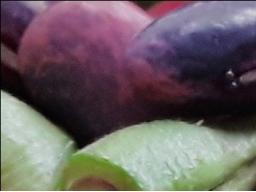 Webinar: Ernährungs LÜGEN 2.Teil