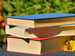 Webinar: Für dich gelesen - Nahtoderfahrungen