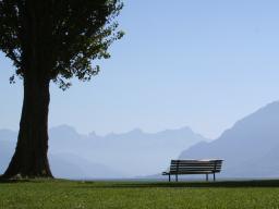 Webinar: Dem Burnout vorbeugen - die Balance wahren - entspannen Teil 2