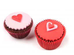 Webinar: 7 Schritte zur neuen Liebe - Suchstrategien