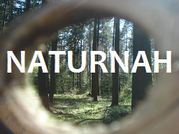 Webinar: Naturgestützte Selbsthypnose lernen, Teil 1