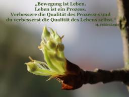 Webinar: Feldenkrais zu Ostern
