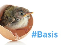 Webinar: Twitterkurs BASIS