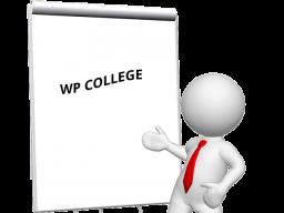 Webinar: WP COLLEGE Sprechstunde #4