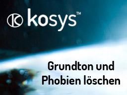 Webinar: Grundton und Phobien löschen