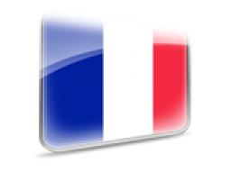 Webinar: Wiederholung Französisch - Lektion 1