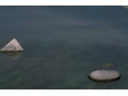 Webinar: Homöopathie bei Angststörungen