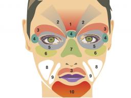 Webinar: Hautdiagnose nach dem Ursachenprinzip