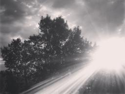 Webinar: Reise ins Ungewisse  ein Blind date mit dem Leben?