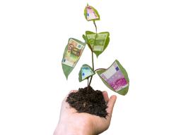 Webinar: Unternehmen - Chancen und Risiken nach Branchen