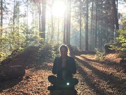 Webinar: Meditation Einsteigerkurs Teil 1
