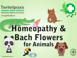 Webinar: Homeopathy and Bach Flowers for animals