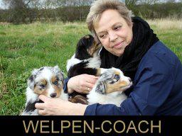 Webinar: Hirsch Basis Hunde Webinar Teil 2