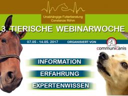 Webinar: Equines Multiorgan Dysfunktionssyndrom | Referentin Conny Röhm