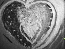 Webinar: Was brauche ich, damit es mir emotional gut geht?
