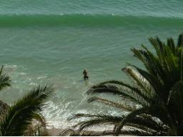 Webinar: Live like a surfer  Life Balance 3.0