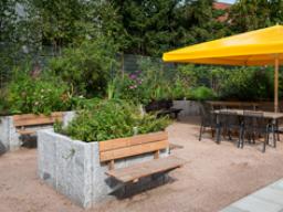 Webinar: Hochbeete - Gärtnern auf hohem Niveau