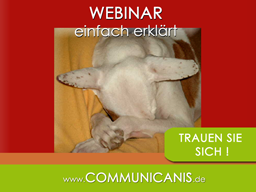 Webinar: sicher im Webinar - (Funktionen erklärt)