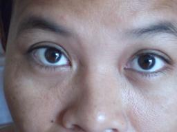 """Webinar: Der Mensch ist ein """"Augentier"""""""