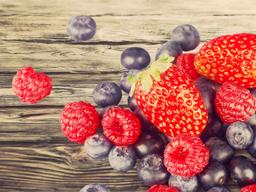Webinar: Krebsprävention durch vegane Ernährung