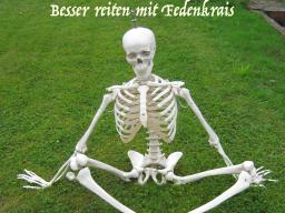 """Webinar: Feldenkrais Online """"Beckenuhr"""""""