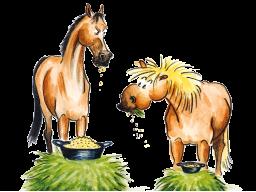 Webinar: Purzel pfeift auf Panikmache! - Mythen der Pferdeernährung -