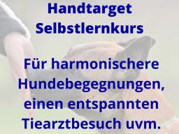 Webinar: Handtarget - Informationen zum Selbstlernkurs