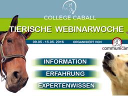 Webinar: Pferde gesund füttern (Angélique Behrens)