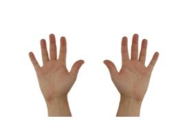 Webinar: Darf ich mit den Fingern rechnen?