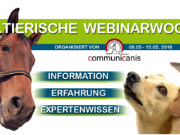 Webinar: Heilkräuter für Hunde (Referentin Ute Wadehn)